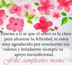 Feliz Día de Cumpleaños Mamá Ejemplar