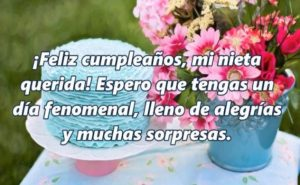Feliz cumpleaños Amada Nieta