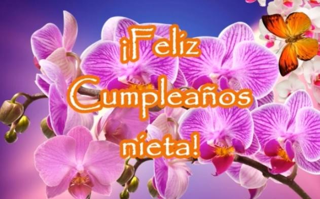 Feliz cumpleaños Nieta Bella