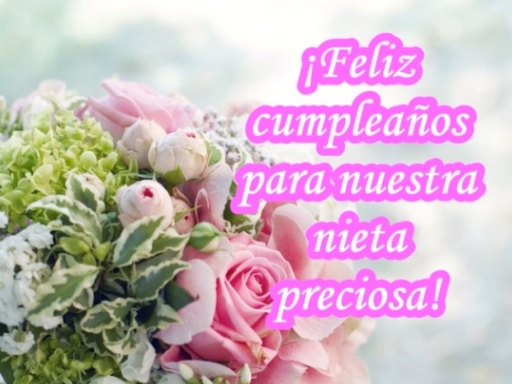 Feliz cumpleaños Nieta Preciosa