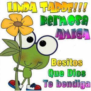 Linda Tarde Hermosa Amiga
