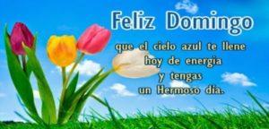 Feliz Domingo a todos mis amigos y familiares