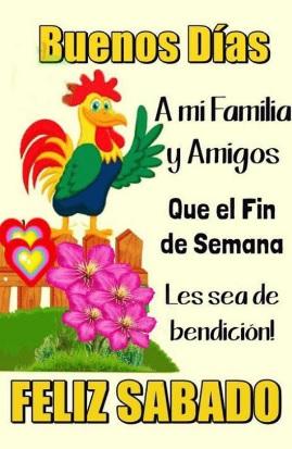 Feliz sábado amigos y amigas