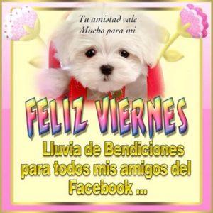 Feliz viernes para mis amigos del facebook