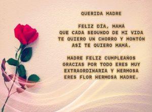 feliz cumpleaños madre maravillosa