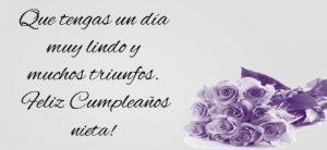 Feliz Cumpleaños Nieta Estudiosa