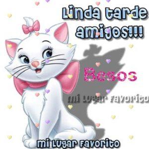Linda Tarde Amigos!!!